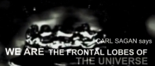 Carl Sagan says we are the frontal lobes of the Universe.